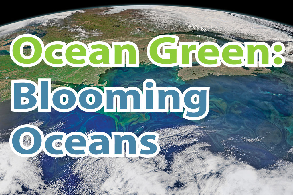 Ocean Green: Blooming Oceans