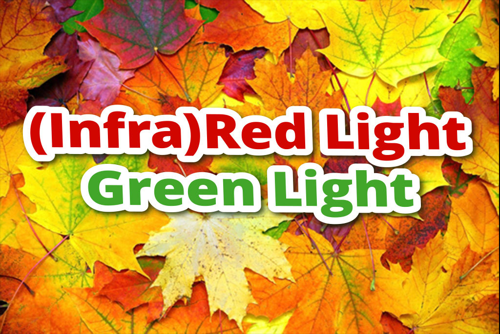 (Infra)Red Light, Green Light