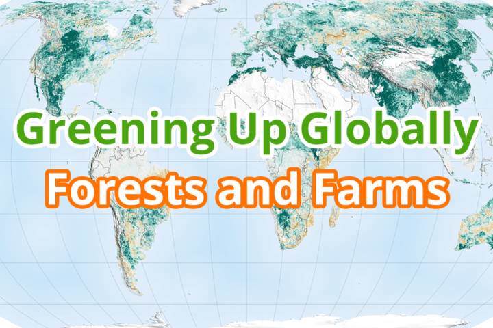 Greening Up Globally: Forests and Farms