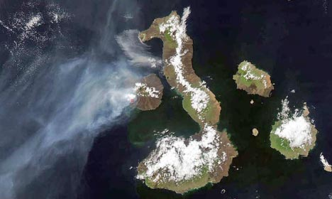Earth Observatory's coverage of the eruption on Fernandina Island