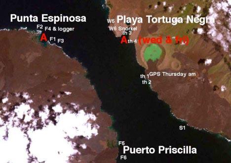 Punta Vicente Roca, Playa Tortuga Negra, and Puerto Priscilla