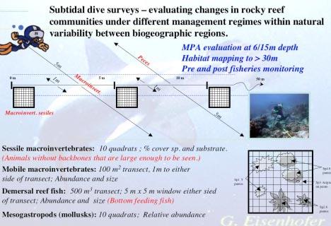 Subtidal community monitoring
