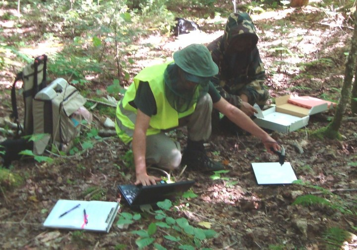 Jeremy Rubio and Guoqing Sun measuring forest floor reflectance in the Penobscot Experimental Forest.  The light reflected back from the forest floor interacts with remote sensing instruments. In order to accurately measure biomass, reflectance needs to be well understood.