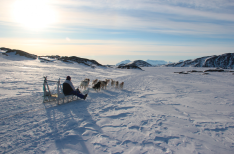 Watching dogsleds go by in Kulusuk.