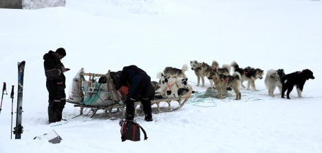 A dog sled getting ready to leave. (Credit: Clément Miège.)