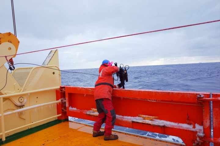 Dropping the radiometer into the water Photo credit: Isabella Rosso
