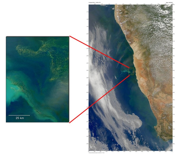 Discoloration in the Benguela Current off the coast of Namibia