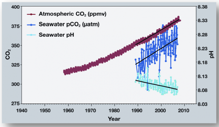 pH time series http://www.pmel.noaa.gov/co2/story/OA+Observations+and+Data