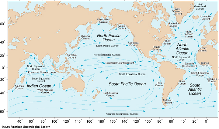 Global Ocean Circulation  http://oceanmotion.org/html/background/wind-driven-surface.htm