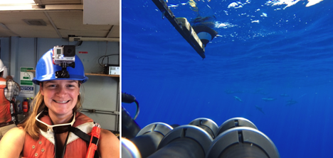 Left: A selfie I took while wearing the GoPro on my hardhat. Credit: Ali Chase; Right: Dolphins near the Polarimeter deployed with a GoPro attached. Credit: Wayne Slade