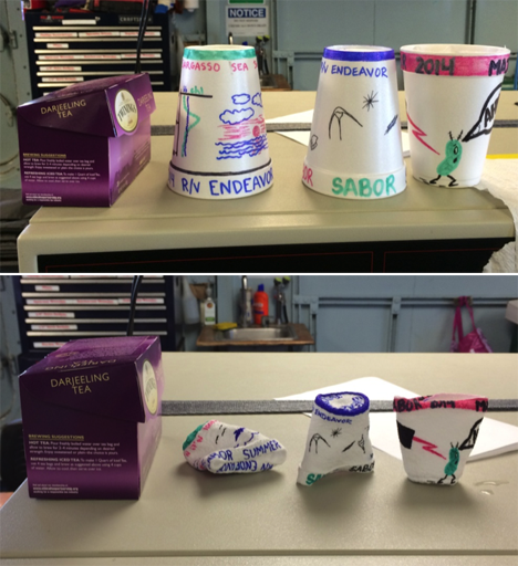Styrofoam cups that were attached to the CTD and lowered to 1,000 meters, where the pressure compresses them (top = before, bottom = after; box of tea shown for scale). Credit: Ali Chase