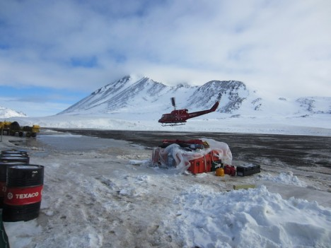 Flying off to the ice sheet.
