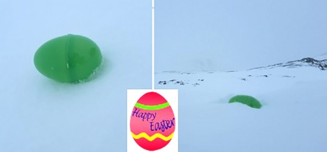 Easter-egg hunt in the snow