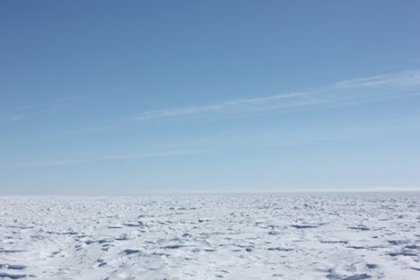 Sestrugies along the expanse of the ice sheet.