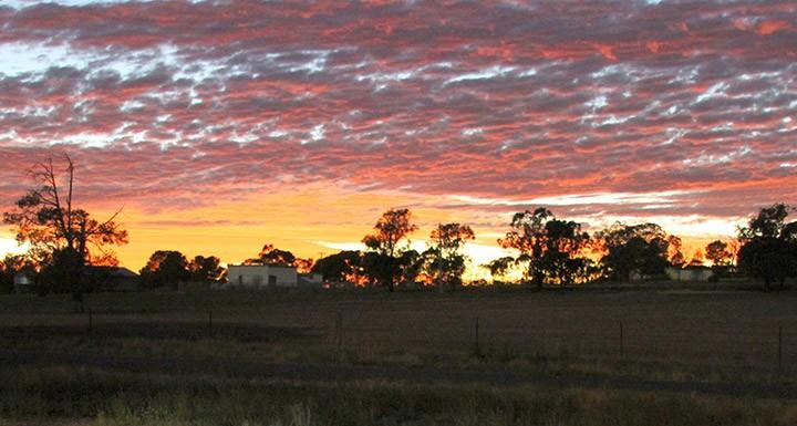 Early mornings. Photo by Amy McNally.