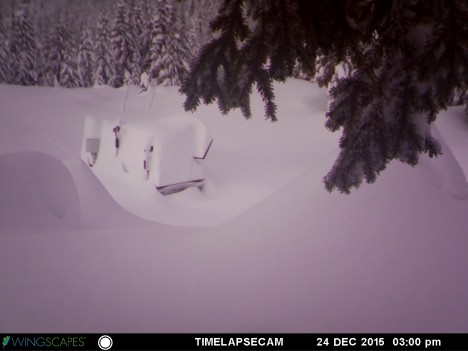 Photo taken December 24, 2015 by the remote camera monitoring the snow accumulation at the trailer. This snow came from the same series of storms that buried the PIP at Hurricane Ridge shown above.