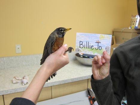 Billie Jo_namecard