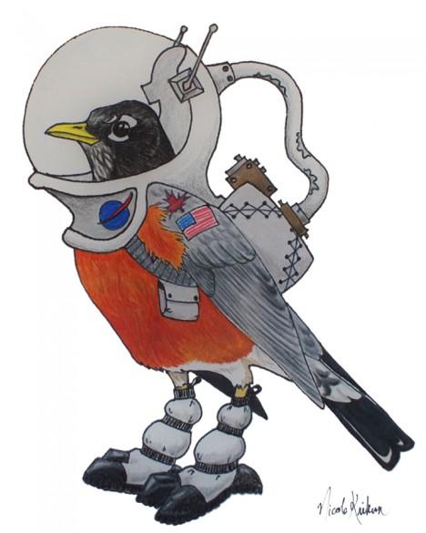 Space robin by Nicole Krikun.