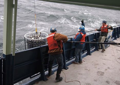 Researchers recovering the Conductivity-Temperature-Depth Bottle rosette that contains water samples from as deep as 1500 meters. Photo: Stuart Halewood.