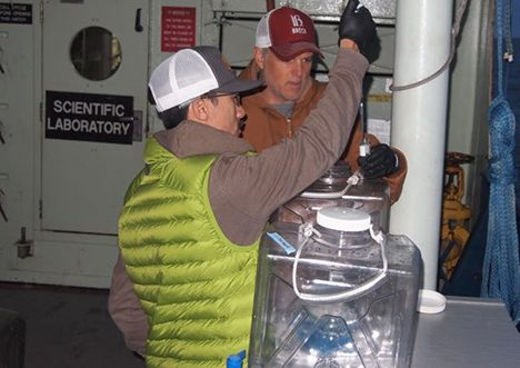C. Carlson and N. Huynh setting up microbial growth experiment.  Photo: Stuart Halewood.