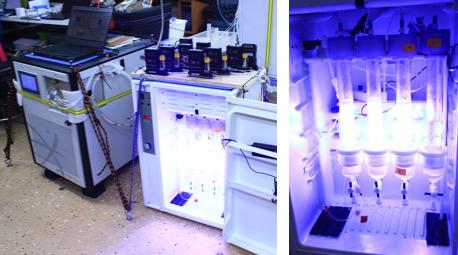 James Bond (aka 007) and his incubators. Photo: Cleo Davie-Martin