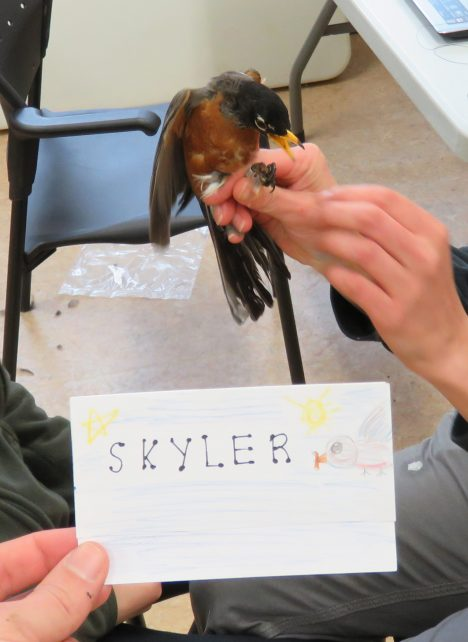 Skyler is an adult male. His name was chosen by Mr. Lane's 5th grade class. (photo credit: Ruthie Oliver)