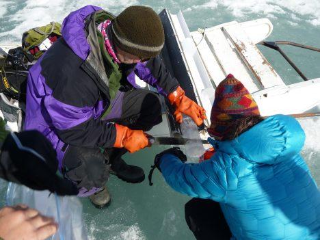 Slicing a sea ice core.