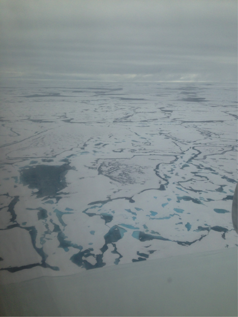 Flying over the arctic on the DC8. The dark and bright blue patches are melt pools in the ice (Credit: Christina Williamson).