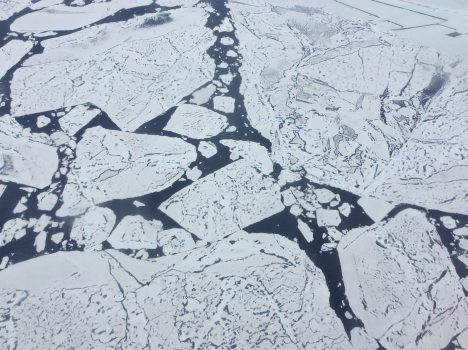 ") Close-up view of ice floes at 79o N. The dark features on the ice are melt ponds, and the dark areas of between the floes are open water of the Arctic Ocean. The floes are very flat, signifying ""first year ice"". Credit: Steve Wofsy"