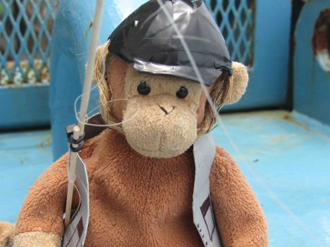 Monkey geared up for fishing.