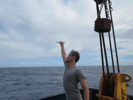 Sam Levang from WHOI catches a flying fish in flight.