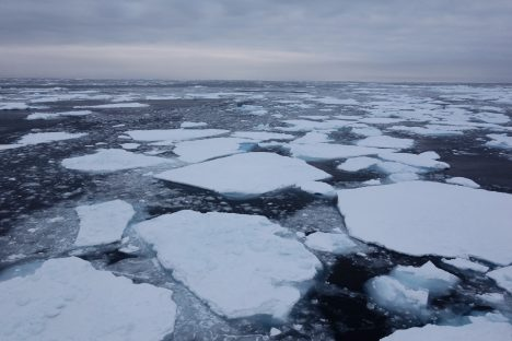 A mix of old and new sea ice floating through the northern Beaufort Sea during one of the last days of the cruise that we observed sea ice.
