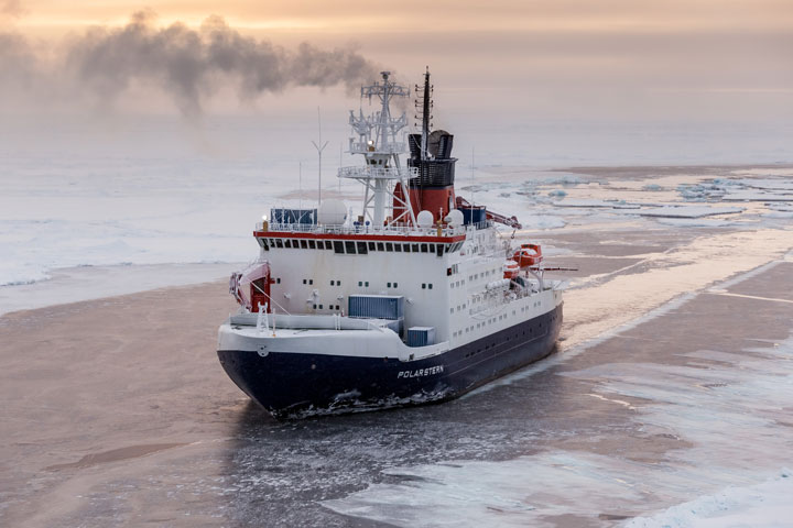 In Search of a New Home Across the Frozen Sea