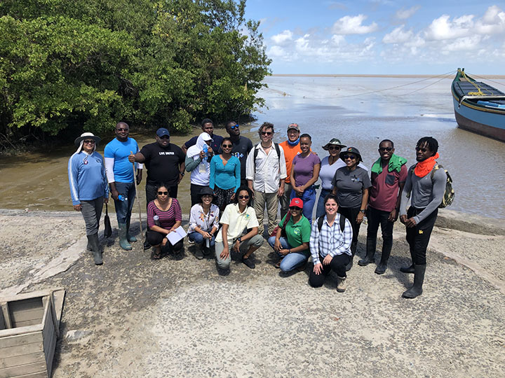Local Agencies in Guyana to Monitor Mangroves in Face of a Changing Climate